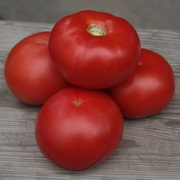 Семена розового томата КИБО F1 (Китано)