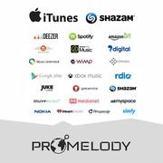 Promelody - лучший способ продавать свою музыку!